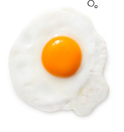 facts-left-egg.png